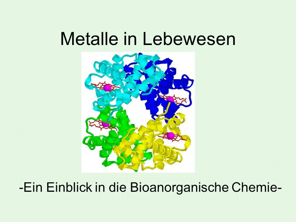 Metalle in Lebewesen -Ein Einblick in die Bioanorganische Chemie-