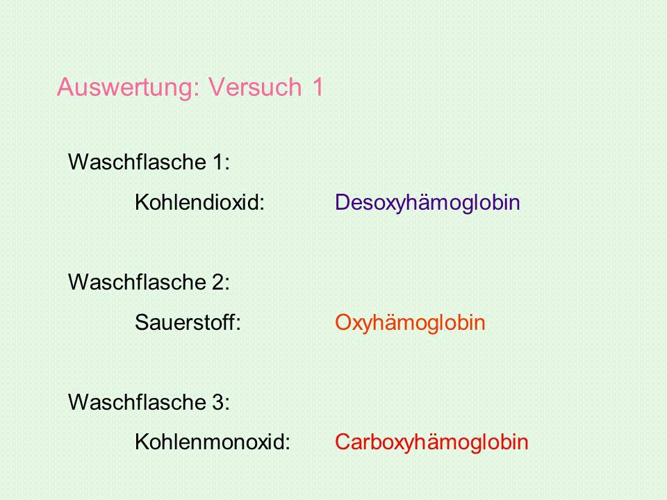 Auswertung: Versuch 1 Waschflasche 1: Kohlendioxid:Desoxyhämoglobin Waschflasche 2: Sauerstoff:Oxyhämoglobin Waschflasche 3: Kohlenmonoxid:Carboxyhämo