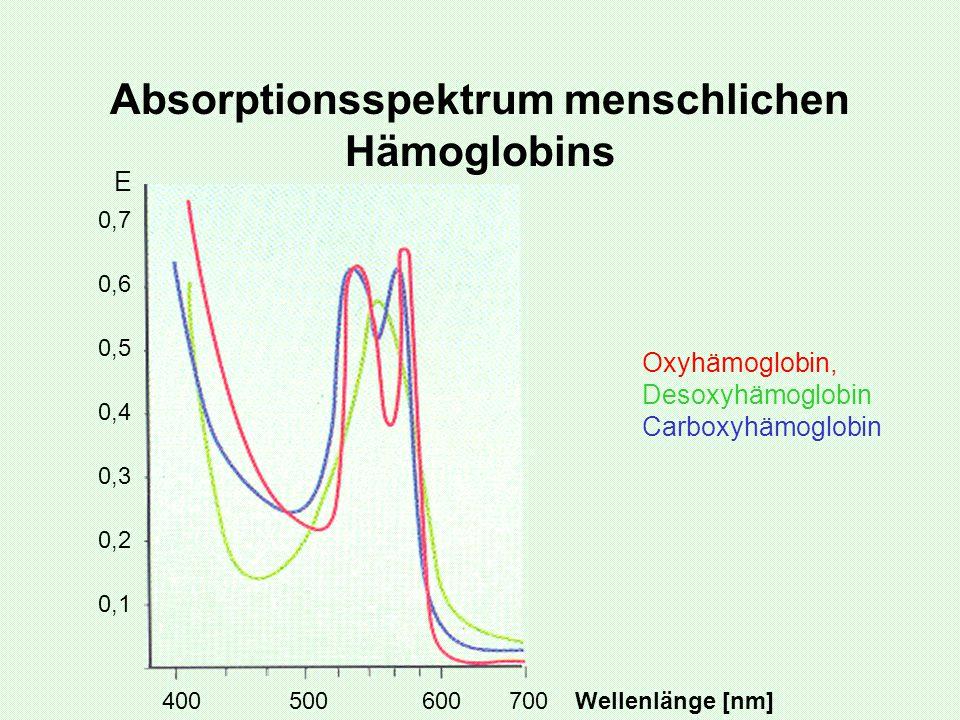 Absorptionsspektrum menschlichen Hämoglobins Oxyhämoglobin, Desoxyhämoglobin Carboxyhämoglobin E 400 500 600 700 Wellenlänge [nm] 0,1 0,2 0,3 0,4 0,5