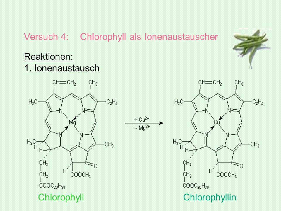 Versuch 4: Chlorophyll als Ionenaustauscher Reaktionen: 1. Ionenaustausch Chlorophyll Chlorophyllin