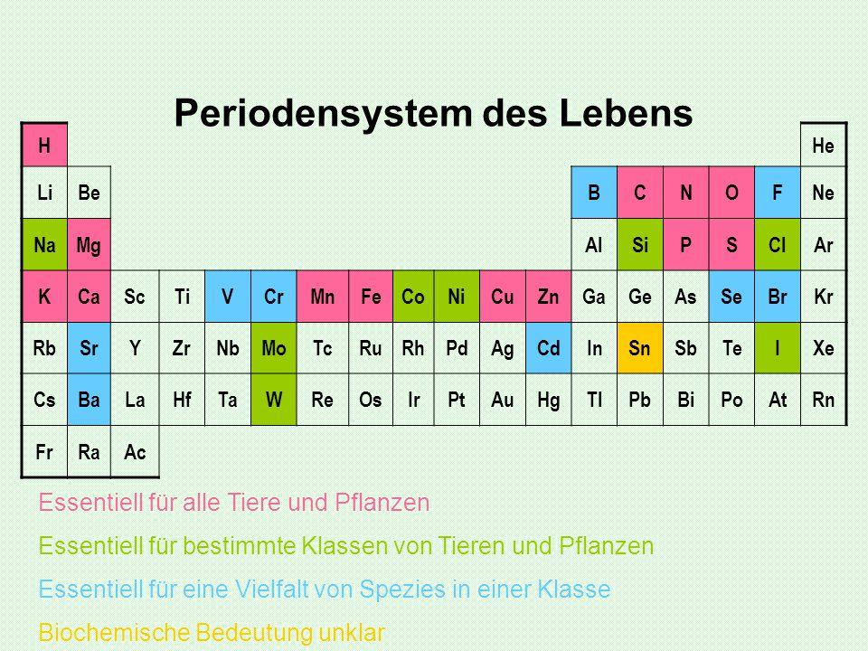 Eine Auswahl essentieller Spurenelement Eisen: 4 – 5 g Zink: 0,04 – 0,08 g Kupfer:2 – 4 g