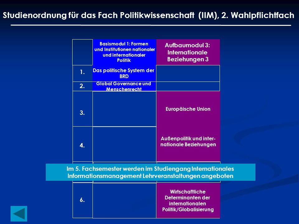 Studienordnung für das Fach Politikwissenschaft (IIM), 2. Wahlpflichtfach Basismodul 1: Formen und Institutionen nationaler und internationaler Politi