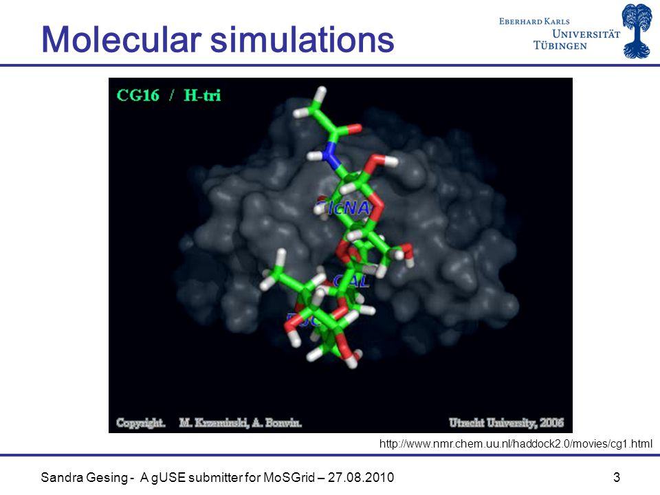 3 Molecular simulations   Sandra Gesing - A gUSE submitter for MoSGrid –