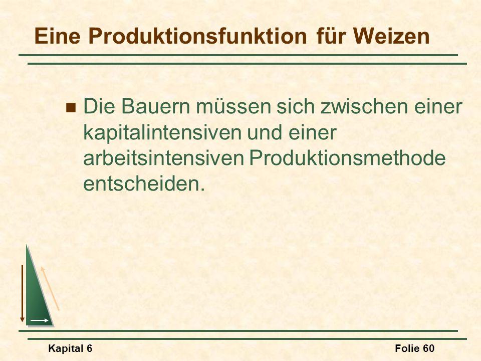 Kapital 6Folie 60 Eine Produktionsfunktion für Weizen Die Bauern müssen sich zwischen einer kapitalintensiven und einer arbeitsintensiven Produktionsm