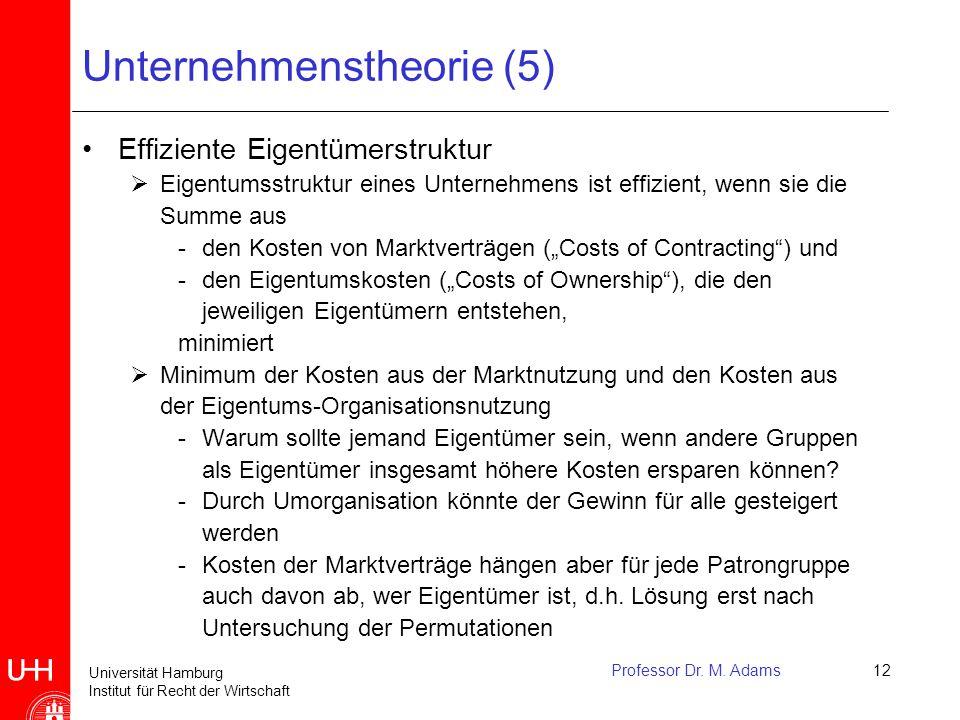 Universität Hamburg Institut für Recht der Wirtschaft Professor Dr. M. Adams12 Unternehmenstheorie (5) Effiziente Eigentümerstruktur  Eigentumsstrukt