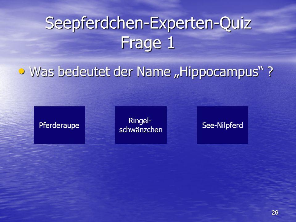 """26 Seepferdchen-Experten-Quiz Frage 1 Was bedeutet der Name """"Hippocampus"""" ? Was bedeutet der Name """"Hippocampus"""" ? PferderaupeSee-Nilpferd Ringel- schw"""