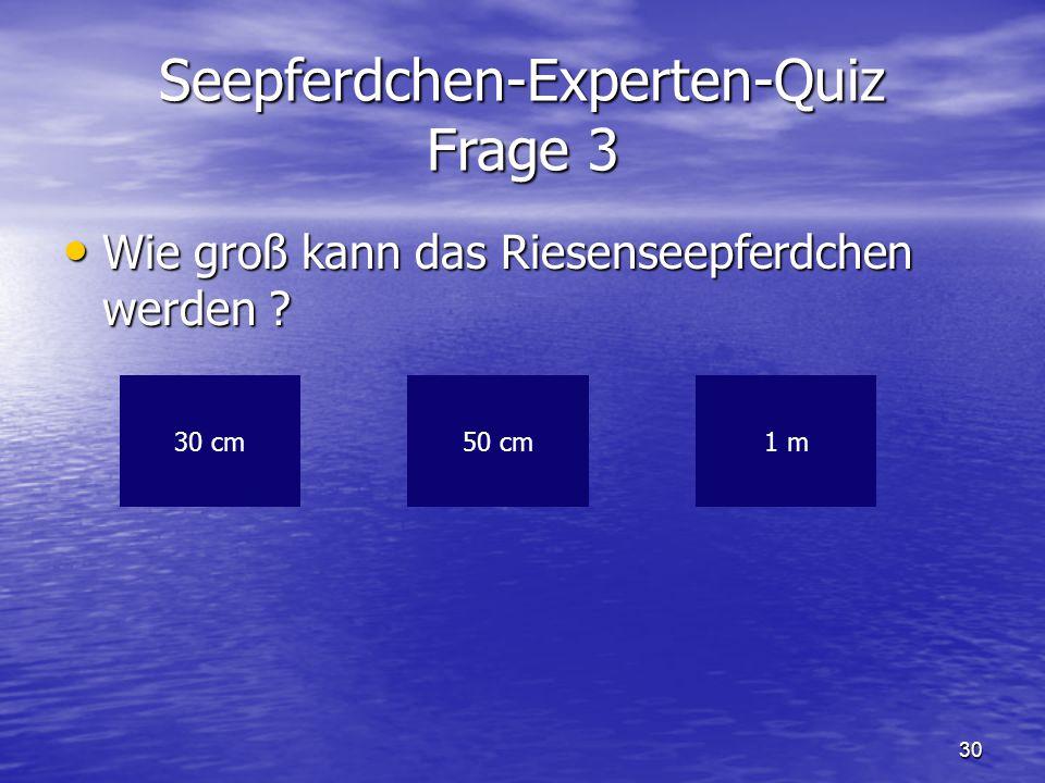 30 Seepferdchen-Experten-Quiz Frage 3 Wie groß kann das Riesenseepferdchen werden ? Wie groß kann das Riesenseepferdchen werden ? 30 cm1 m50 cm