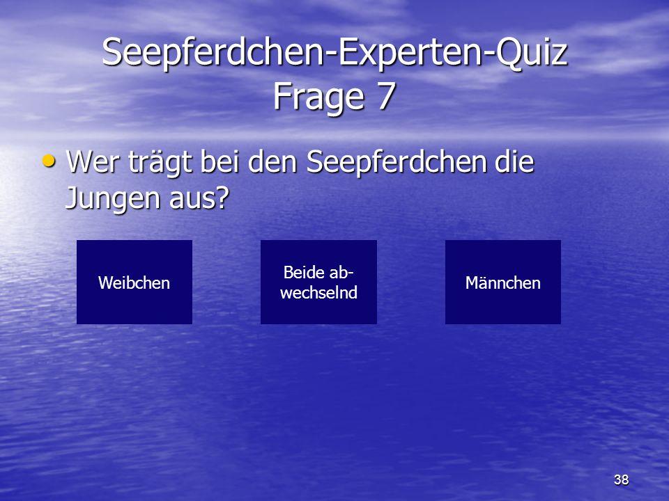 38 Seepferdchen-Experten-Quiz Frage 7 Wer trägt bei den Seepferdchen die Jungen aus? Wer trägt bei den Seepferdchen die Jungen aus? WeibchenMännchen B