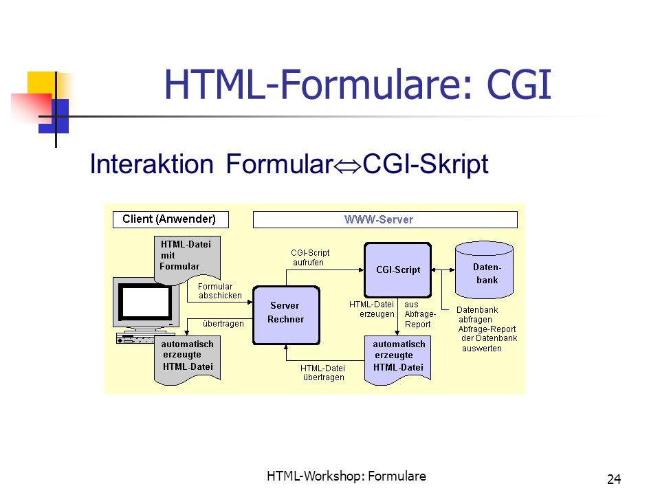 HTML-Workshop: Formulare 24 HTML-Formulare: CGI Interaktion Formular  CGI-Skript