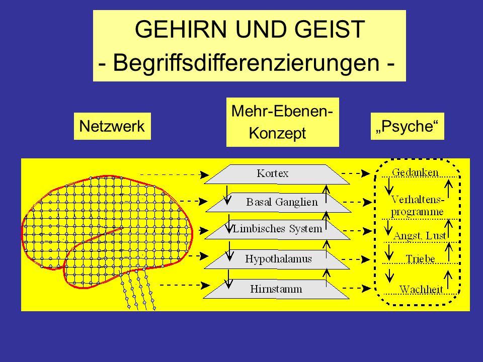 """GEHIRN UND GEIST - Begriffsdifferenzierungen - Netzwerk Mehr-Ebenen- Konzept """"Psyche"""""""