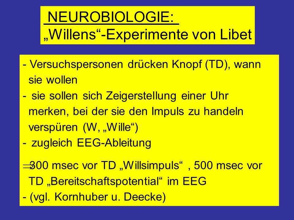 """NEUROBIOLOGIE: """"Willens""""-Experimente von Libet - Versuchspersonen drücken Knopf (TD), wann sie wollen - sie sollen sich Zeigerstellung einer Uhr merke"""