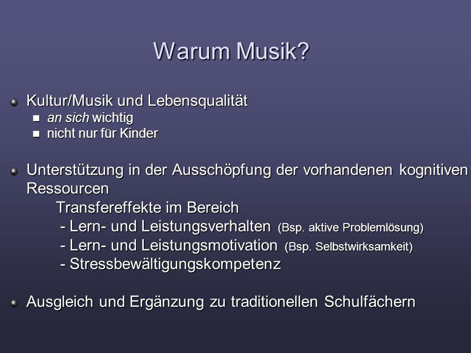 Warum Musik.
