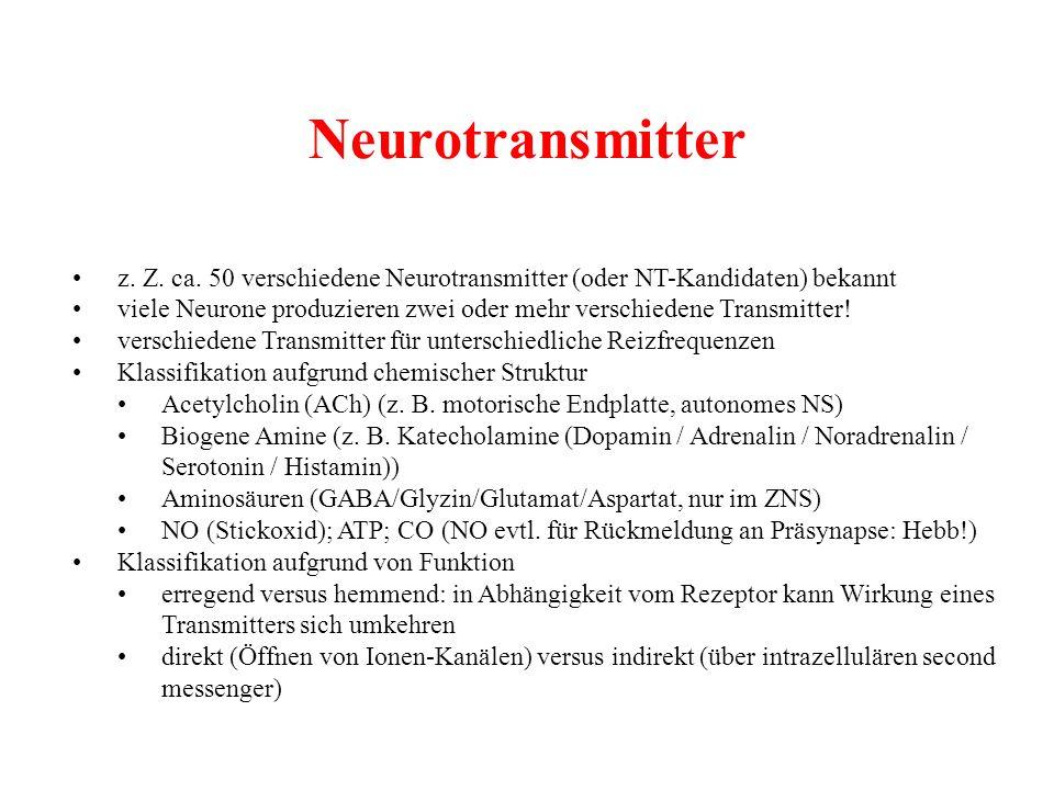 Neurotransmitter z. Z. ca. 50 verschiedene Neurotransmitter (oder NT-Kandidaten) bekannt viele Neurone produzieren zwei oder mehr verschiedene Transmi