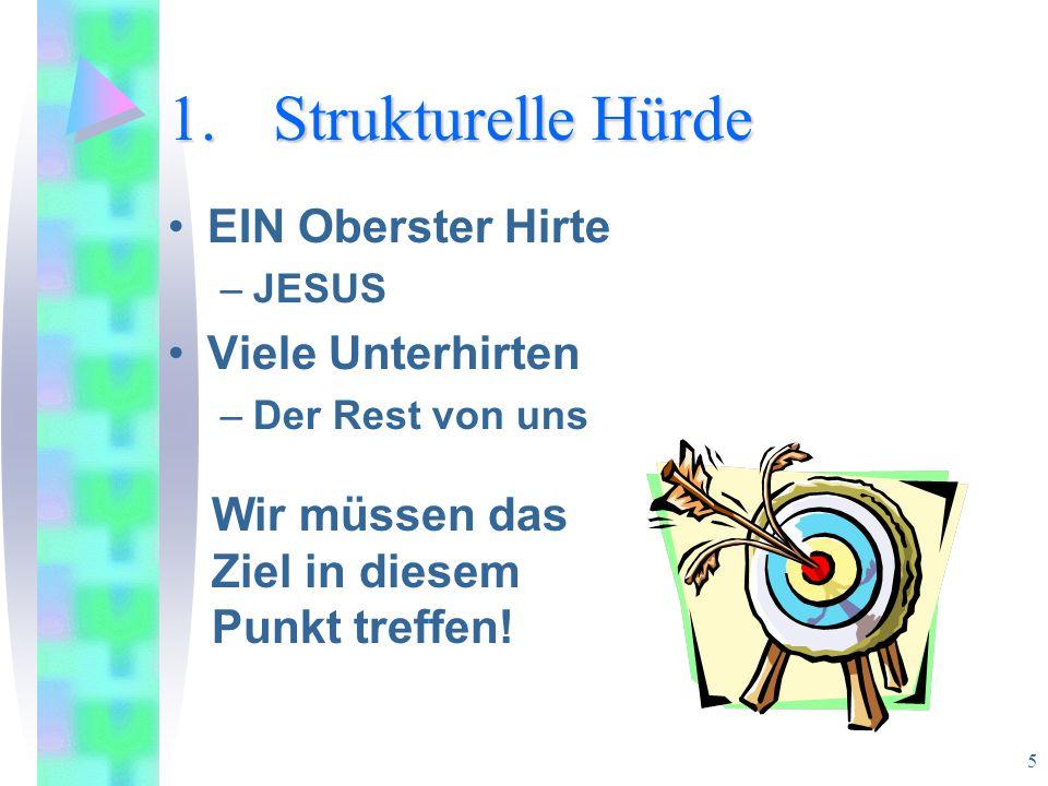 16 8 Spannungsfelder Pastorale - Apostolische Leiterschaft –Die Notwendigkeit flüssiger Zusammenarbeit.