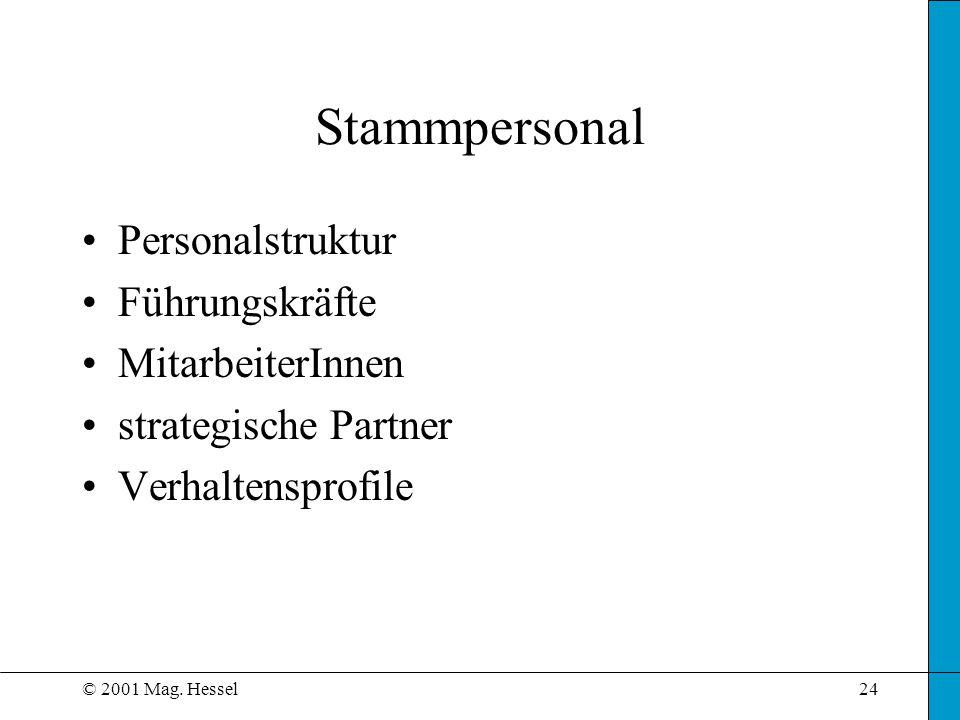 © 2001 Mag. Hessel24 Stammpersonal Personalstruktur Führungskräfte MitarbeiterInnen strategische Partner Verhaltensprofile