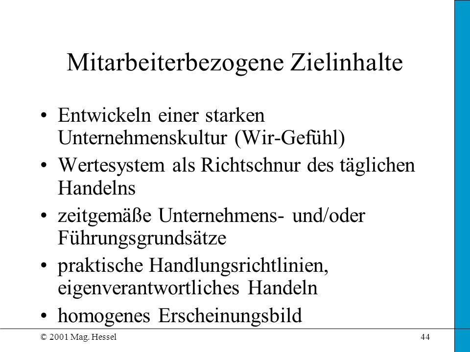 © 2001 Mag. Hessel44 Mitarbeiterbezogene Zielinhalte Entwickeln einer starken Unternehmenskultur (Wir-Gefühl) Wertesystem als Richtschnur des tägliche