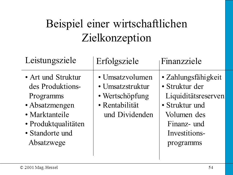 © 2001 Mag. Hessel54 Beispiel einer wirtschaftlichen Zielkonzeption Leistungsziele ErfolgszieleFinanzziele Art und Struktur des Produktions- Programms