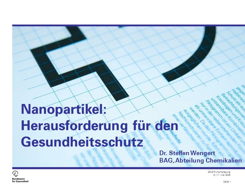 GSG-Frühjahrstagung 10./11. Mai 2006 Seite 1 Nanopartikel: Herausforderung für den Gesundheitsschutz Dr. Steffen Wengert BAG, Abteilung Chemikalien