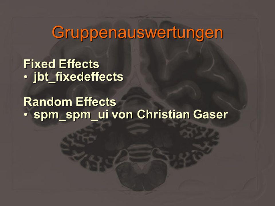 Gruppenauswertungen Fixed Effects jbt_fixedeffects jbt_fixedeffects Random Effects spm_spm_ui von Christian Gaser spm_spm_ui von Christian Gaser