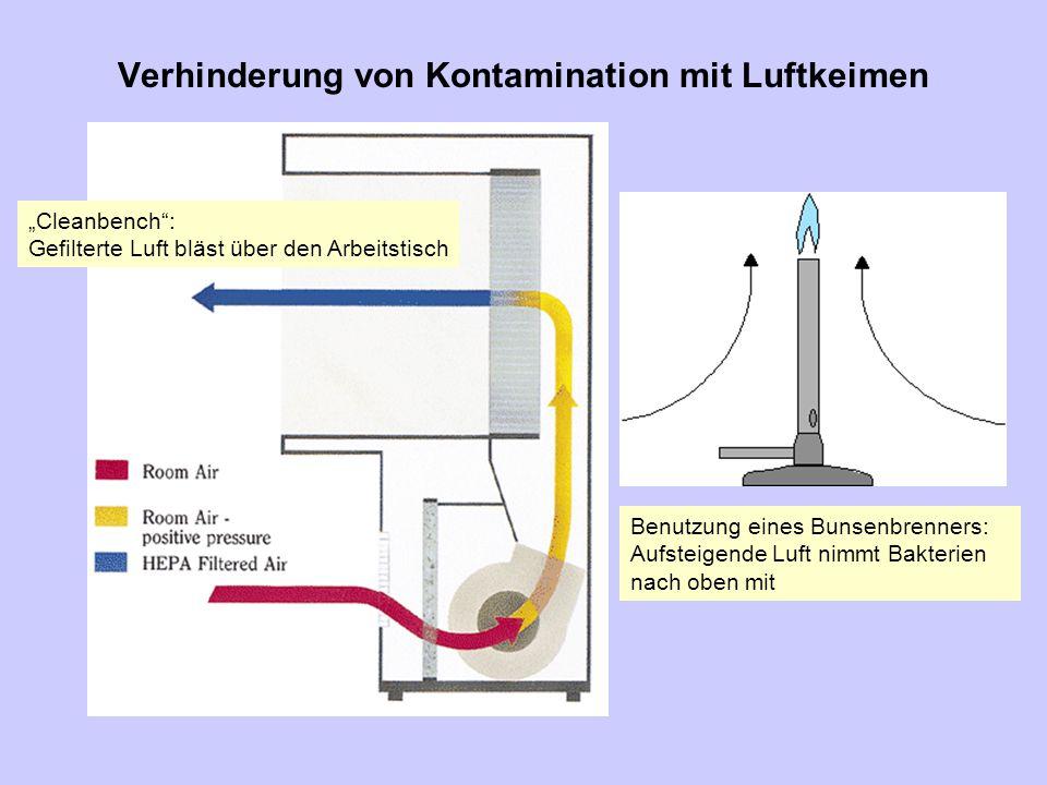 """Verhinderung von Kontamination mit Luftkeimen """"Cleanbench"""": Gefilterte Luft bläst über den Arbeitstisch Benutzung eines Bunsenbrenners: Aufsteigende L"""