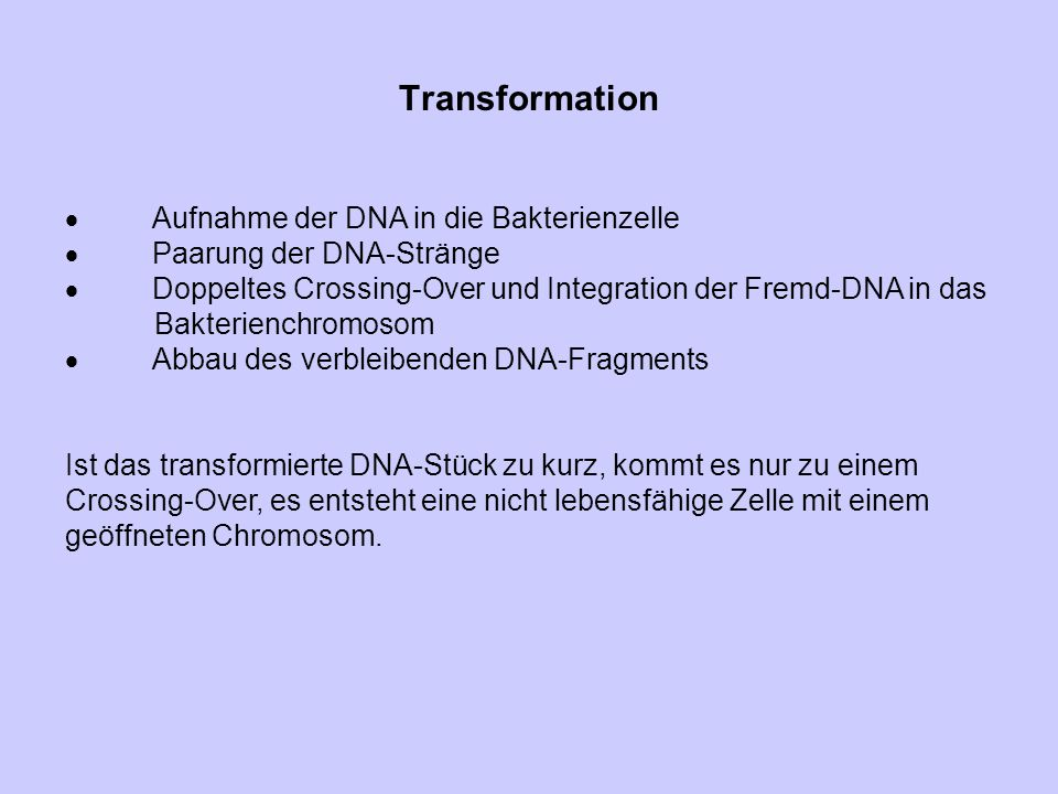 Transformation  Aufnahme der DNA in die Bakterienzelle  Paarung der DNA-Stränge  Doppeltes Crossing-Over und Integration der Fremd-DNA in das Bakte
