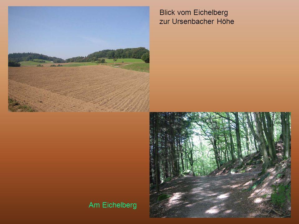 Blick vom Eichelberg zur Ursenbacher Höhe Am Eichelberg