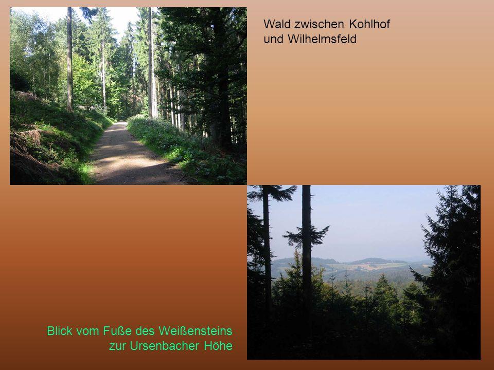 Wald zwischen Kohlhof und Wilhelmsfeld Blick vom Fuße des Weißensteins zur Ursenbacher Höhe