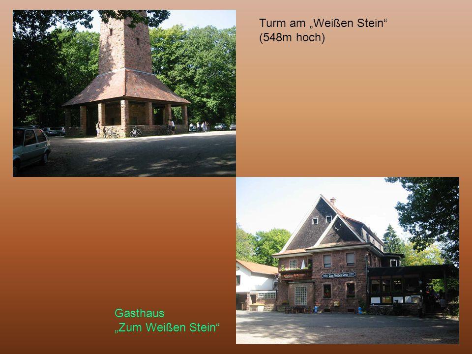 """Turm am """"Weißen Stein"""" (548m hoch) Gasthaus """"Zum Weißen Stein"""""""