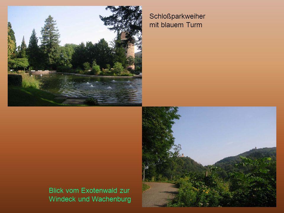 Schloßparkweiher mit blauem Turm Blick vom Exotenwald zur Windeck und Wachenburg