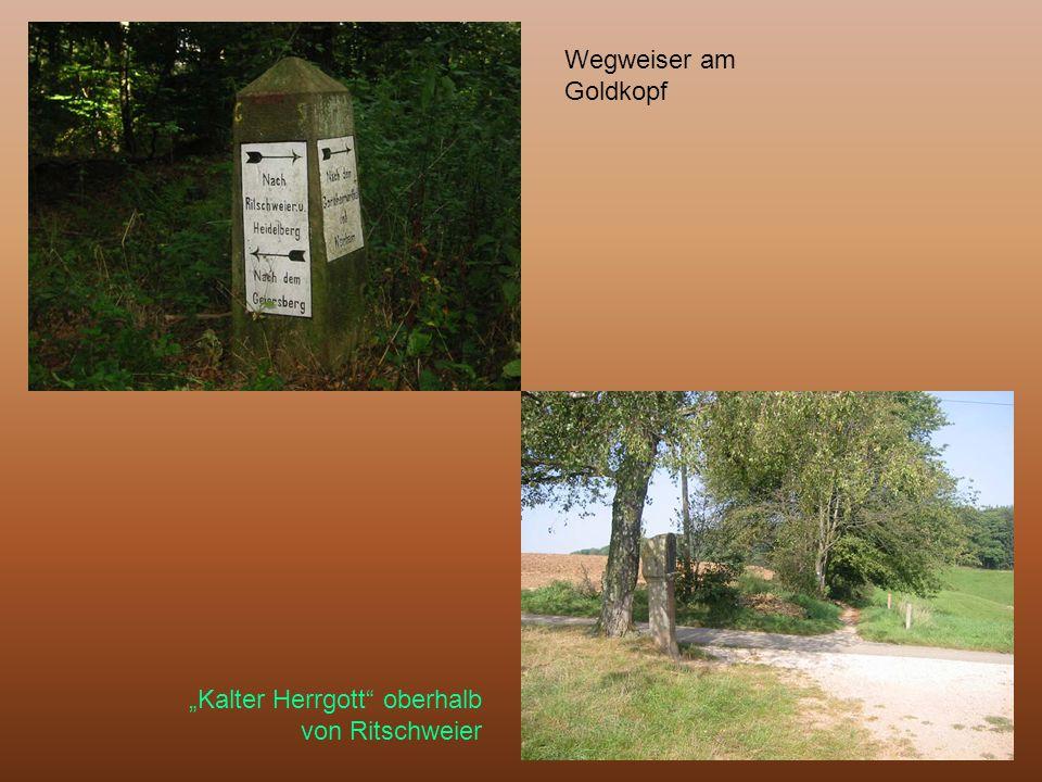 """Wegweiser am Goldkopf """"Kalter Herrgott"""" oberhalb von Ritschweier"""