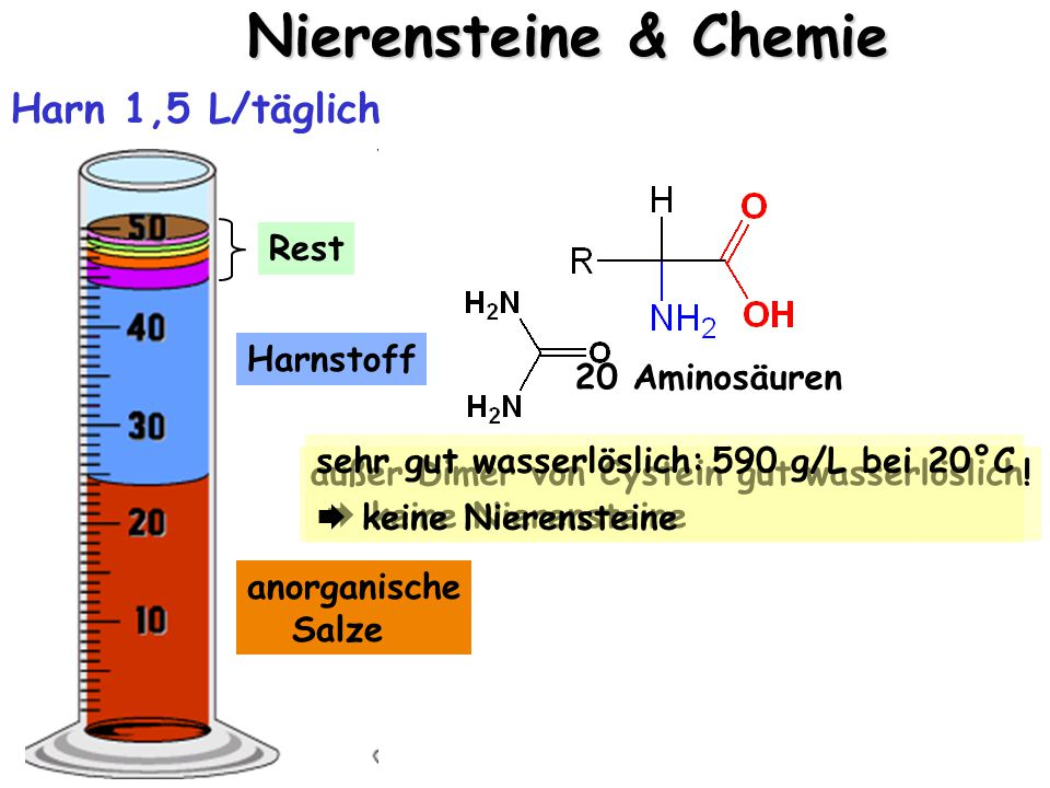 Nierensteine & Chemie anorganische Salze Harn 1,5 L/täglich Harnstoff außer Dimer von Cystein gut wasserlöslich.