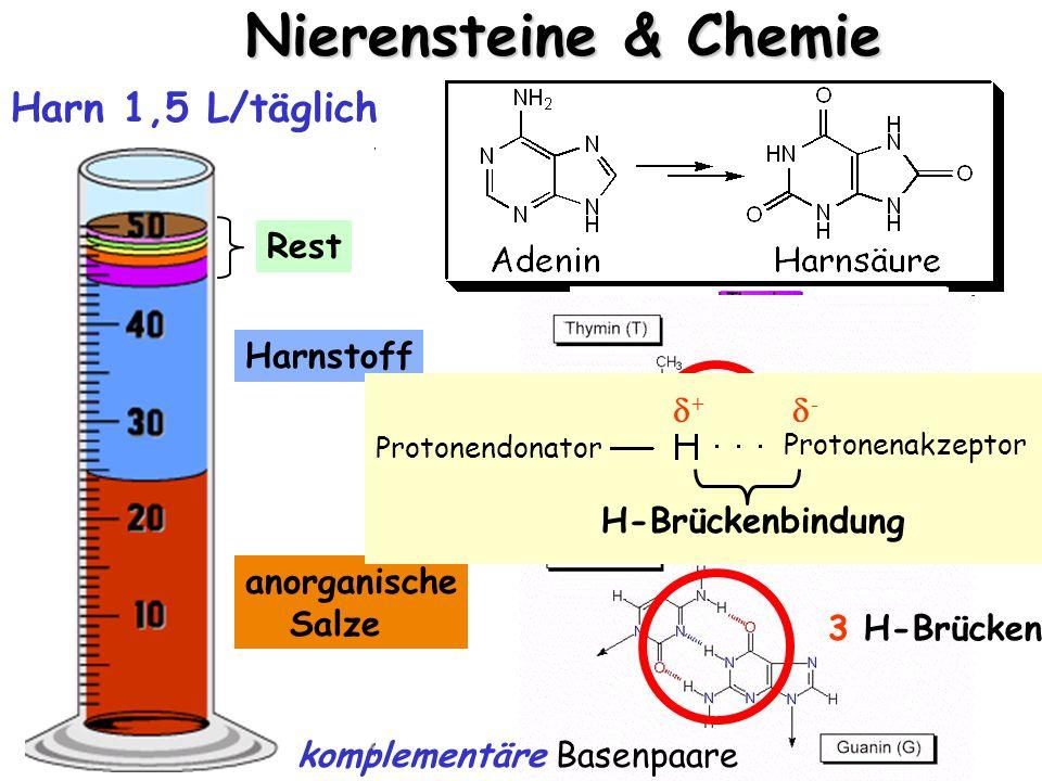 Nierensteine & Chemie anorganische Salze Harnstoff Rest Harn 1,5 L/täglich DNA  aus Nahrung 2 H-Brücken 3 H-Brücken komplementäre Basenpaare ++ -- Protonendonator H-Brückenbindung Protonenakzeptor