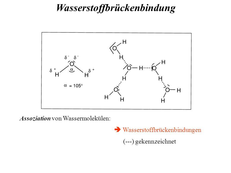 + + -- Assoziation von Wassermolekülen:  Wasserstoffbrückenbindungen (---) gekennzeichnet Wasserstoffbrückenbindung