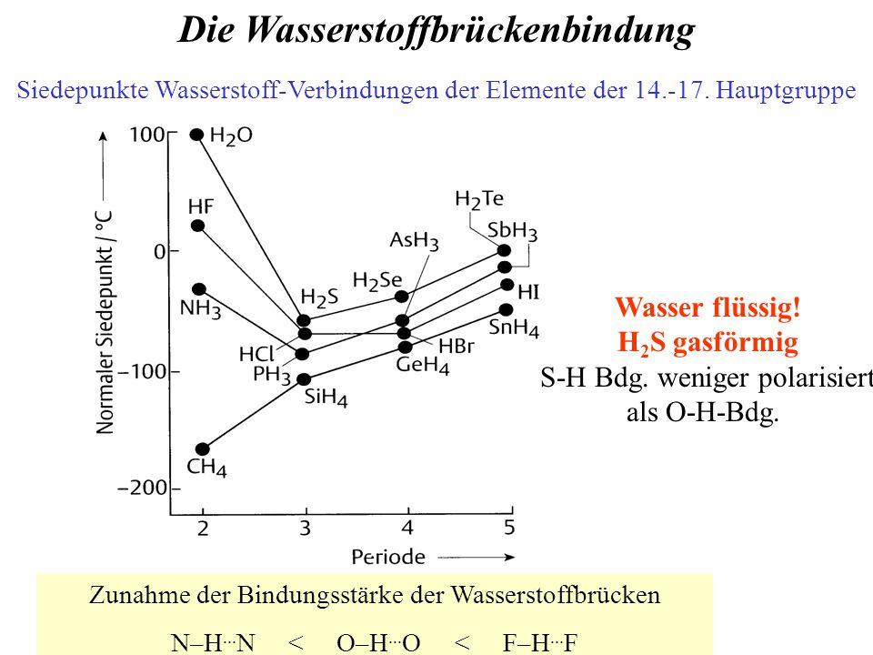 Die Wasserstoffbrückenbindung Siedepunkte Wasserstoff-Verbindungen der Elemente der 14.-17.