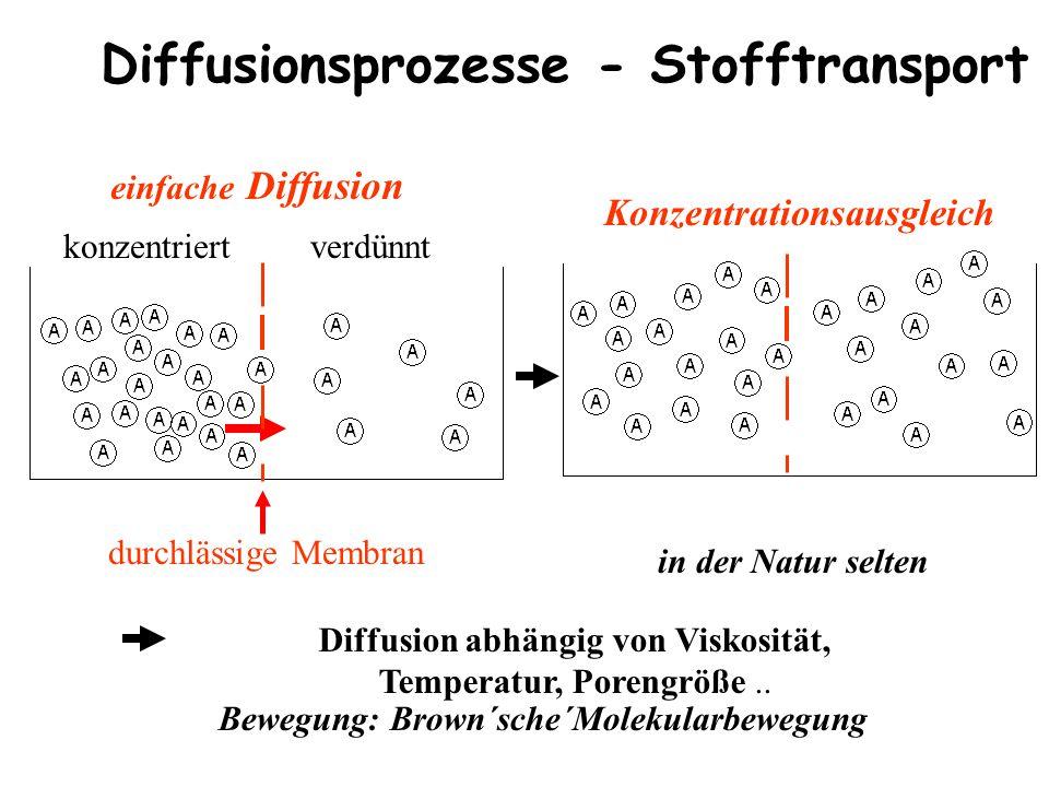 Diffusion abhängig von Viskosität, Temperatur, Porengröße..