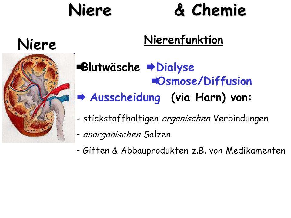 Nierensteine & Chemie Niere Nierenfunktion  Blutwäsche  Dialyse  Osmose/Diffusion Niere: semipermeable (halbdurchlässige) Membran HarnBlut s.