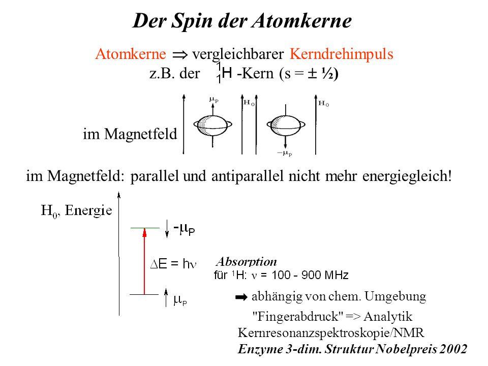 Atomkerne  vergleichbarer Kerndrehimpuls z.B.
