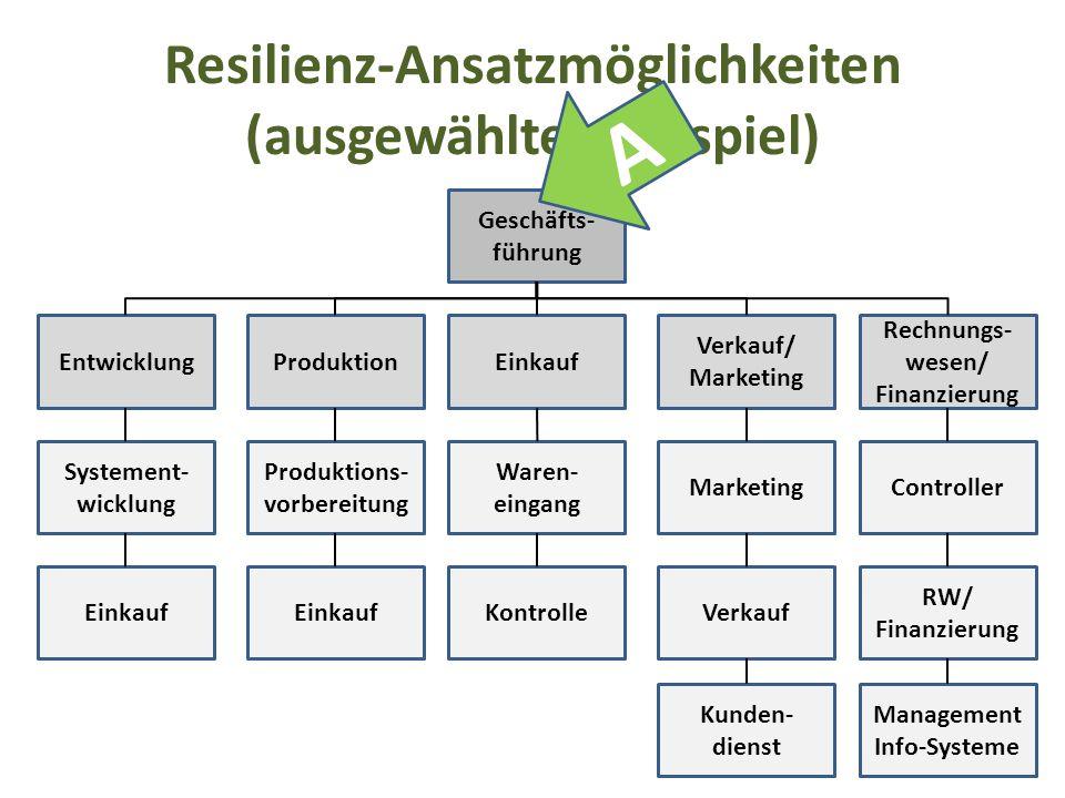 Resilienz-Ansatzmöglichkeiten (ausgewähltes Beispiel) Geschäfts- führung EntwicklungProduktionEinkauf Verkauf/ Marketing Rechnungs- wesen/ Finanzierun