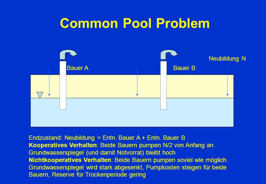 Common Pool Problem Bauer A Bauer B Neubildung N Endzustand: Neubildung = Entn. Bauer A + Entn. Bauer B Kooperatives Verhalten: Beide Bauern pumpen N/