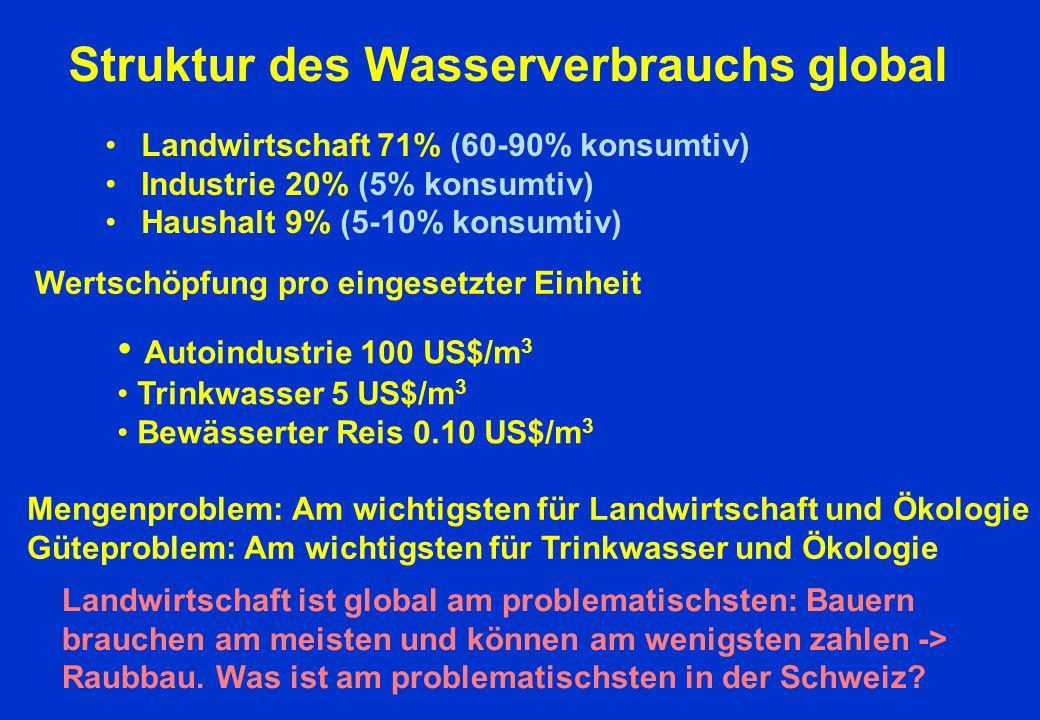 Struktur des Wasserverbrauchs global Landwirtschaft 71% (60-90% konsumtiv) Industrie 20% (5% konsumtiv) Haushalt 9% (5-10% konsumtiv) Wertschöpfung pr