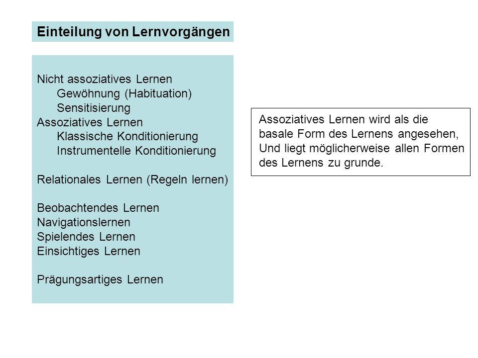 Nicht assoziatives Lernen Gewöhnung (Habituation) Sensitisierung Assoziatives Lernen Klassische Konditionierung Instrumentelle Konditionierung Relatio