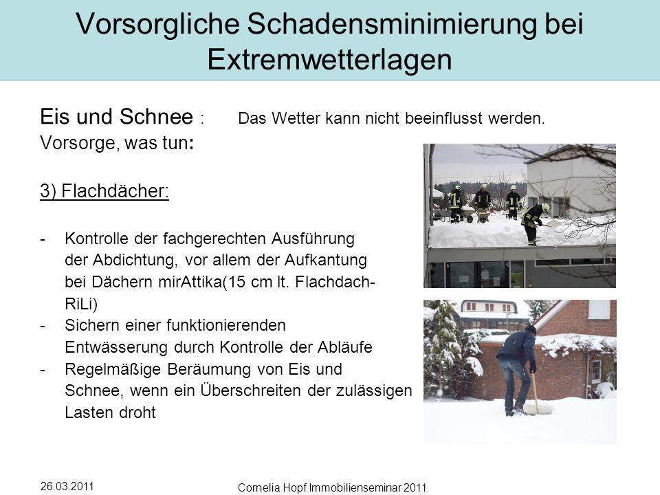 26.03.2011 Cornelia Hopf Immobilienseminar 2011 Vorsorgliche Schadensminimierung bei Extremwetterlagen Eis und Schnee :Das Wetter kann nicht beeinflusst werden.
