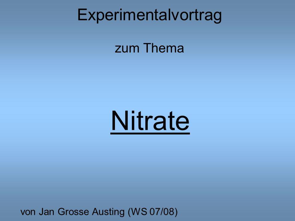 Experimentalvortrag zum Thema Nitrate von Jan Grosse Austing (WS 07/08)