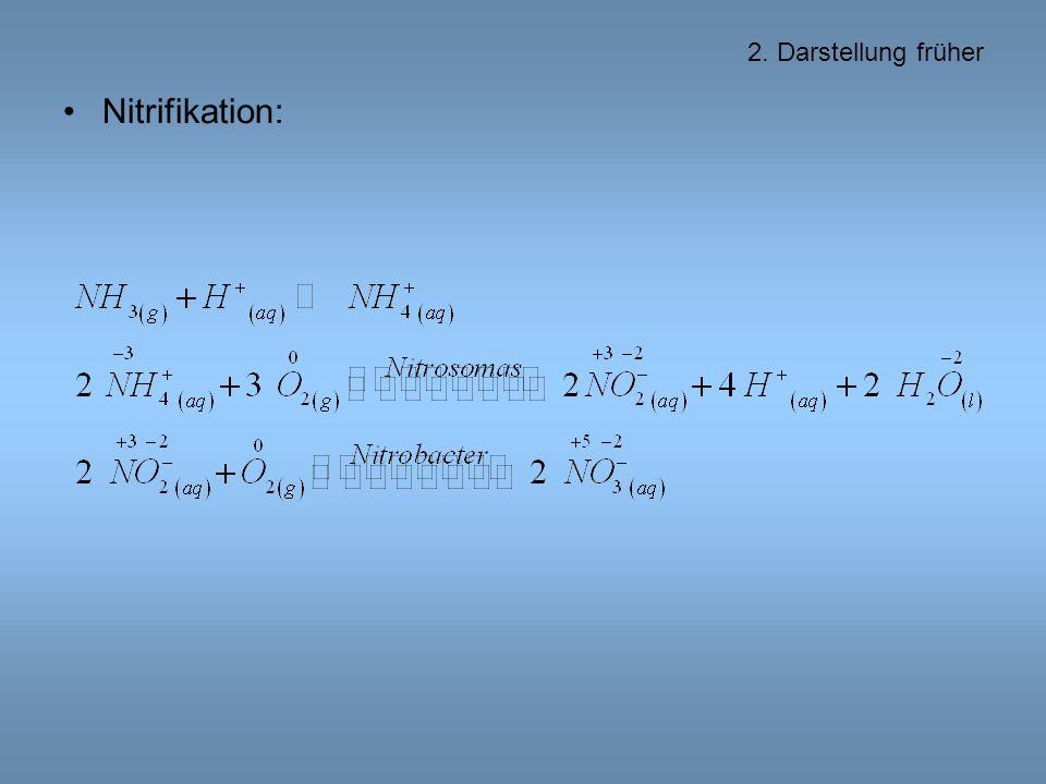2. Darstellung früher Nitrifikation: