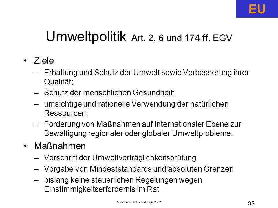 © Anselm Dohle-Beltinger 2002 35 Umweltpolitik Art.