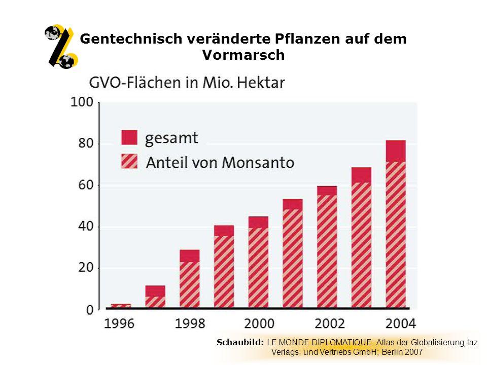 Landwirte geraten in Abhängigkeit der Saatgut-Hersteller - Patente auf gentechnisch verändertes Saatgut - Terminator-Saatgut - Nachbaugebühren Auswirk