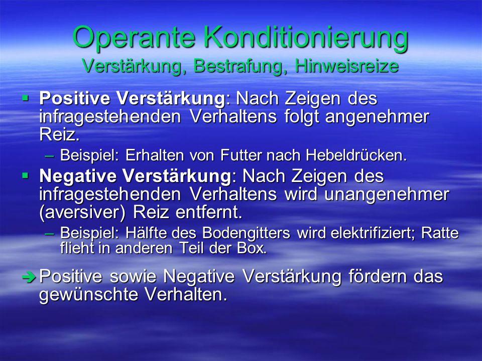 Operante Konditionierung Verstärkung, Bestrafung, Hinweisreize  Positive Verstärkung: Nach Zeigen des infragestehenden Verhaltens folgt angenehmer Re