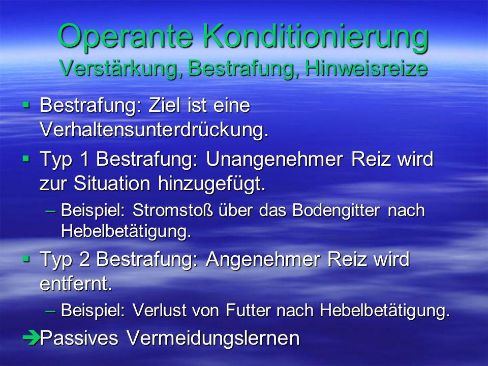 Operante Konditionierung Verstärkung, Bestrafung, Hinweisreize  Bestrafung: Ziel ist eine Verhaltensunterdrückung.  Typ 1 Bestrafung: Unangenehmer R