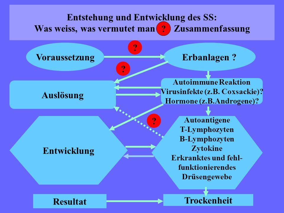 Entstehung und Entwicklung des SS: Was weiss, was vermutet man Zusammenfassung Voraussetzung Auslösung Entwicklung Resultat Erbanlagen ? Autoimmune Re