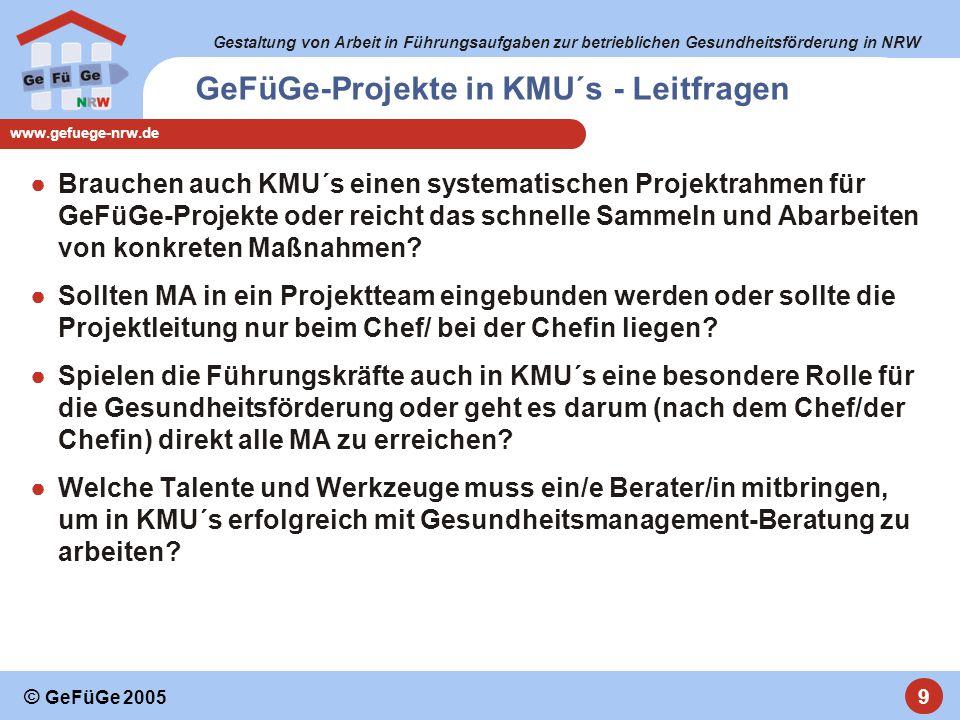 Gestaltung von Arbeit in Führungsaufgaben zur betrieblichen Gesundheitsförderung in NRW www.gefuege-nrw.de 9 © GeFüGe 2005 ●Brauchen auch KMU´s einen